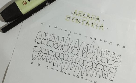 Imagem de um resumo de odontologia