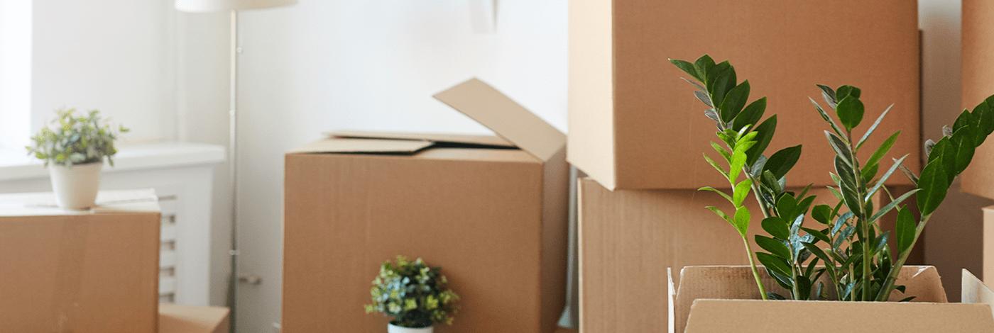 5 dicas rápidas para você organizar a mudança do seu consultório